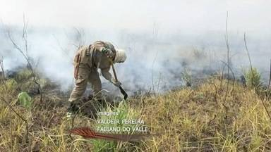 Pantanal continua sendo fortemente atingido pelas queimadas - Pantanal continua sendo fortemente atingido pelas queimadas