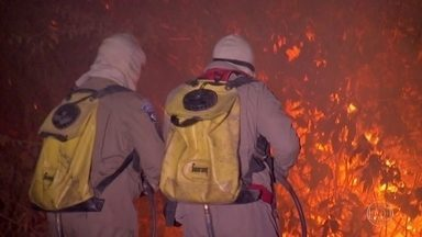 Bombeiros lutam para combater incêndio que já dura duas semanas em Poconé, no Pantanal - O principal problema é que a área que registra os maiores focos é de difícil acesso, o que atrapalha o combate ao fogo tanto por avião quanto por terra.