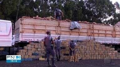 Carga de maconha apreendida em Presidente Prudente pesou quase três toneladas - Droga estava escondida em uma carreta.