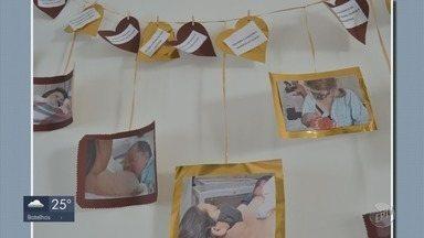 Semana Mundial do Aleitamento Materno reforça importância da amamentação - Semana Mundial do Aleitamento Materno reforça importância da amamentação