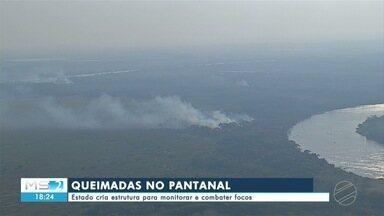 Estado cria estrutura para monitorar e combater focos de queimadas no Pantanal - Estado cria estrutura para monitorar e combater focos de queimadas no Pantanal
