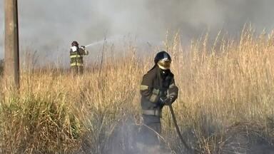 Carro em chamas causa incêndio no acostamento de rodovia em Marília - Um carro em chamas causou um grande incêndio no acostamento da Rodovia do Contorno na manhã desta segunda-feira (10) em Marília (SP).