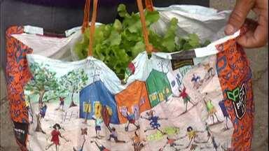 Agricultores de Mogi das Cruzes criam projeto para superar queda nas vendas de hortaliças - O projeto beneficia o produtor que precisa vender as hortaliças e as famílias carentes que dependem de doações.