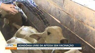 Rondônia livre da aftosa sem vacinação - Estado agora tem reconhecimento nacional da retirada da vacina.