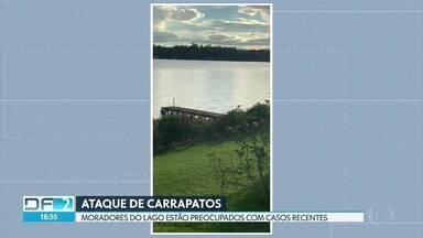 Moradores do Lago Norte relatam casos recentes de ataques de carrapatos - Parasita tem como hospedeiro capivaras, comuns na orla do Lago Paranoá.