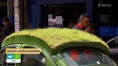 Motorista planta grama em cima de fusca para deixar carro mais fresco - Fusca ecológico suporta calor e chama a atenção
