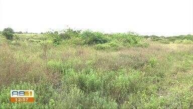 Moradores reclamam de mato alto no Alto do Moura - Problema faz com que haja acúmulo de água, além do perigo de assaltos.