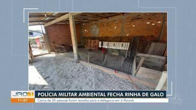 Polícia Militar Ambiental fecha rinha de galo - Cerca de 20 pessoas foram levadas para a delegacia.