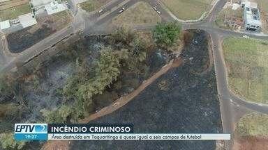 Área destruída por fogo em Taquaritinga, SP, é quase igual a seis campos de futebol - Suspeito de atear fogo à Mata da Laranjeira foi detido.