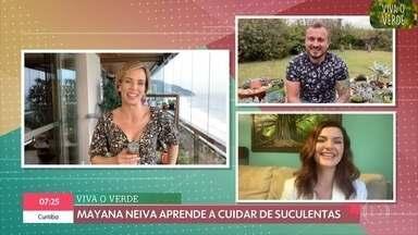 'Viva o Verde - parte 1': Mayana Neiva aprende a cuidar de suas suculentas - O engenheiro florestal Murilo Soares dá dicas para regar e explica que as suculentas são plantas que precisam de sol