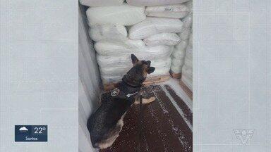 Receita Federal localiza 332 kg de cocaína no Porto de Santos - Receita faz segunda apreensão de cocaína no Porto em 24 horas.