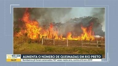 Número de queimadas na região de São José do Rio Preto já supera o do ano passado - Bombeiros foram acionados 747 vezes em 2020.