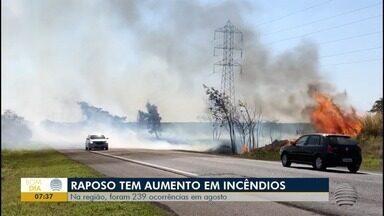 Registros de incêndio às margens de rodovia aumentam em 7% - No Oeste Paulista, foram 239 ocorrências em agosto.