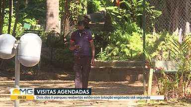 Dois dos seis parques reabertos na capital estão com lotação esgotada até segunda-feira - De acordo com a Prefeitura de BH, as visitas devem ser agendadas.