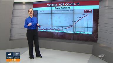 SC tem mais de 186 mil casos e 2.376 mortes por Covid-19 - SC tem mais de 186 mil casos e 2.376 mortes por Covid-19