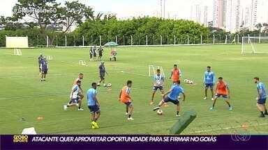 Goiás visita o Sport em busca da reabilitação no Campeonato Brasileiro - Uma das armas do técnico Thiago Larghi é o atacante Vinícius Lopes, autor do gol na derrota para o Corinthians.