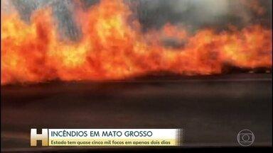 Mato Grosso tem quase cinco mil focos de incêndio em apenas dois dias - Mato Grosso tem quase cinco mil focos de incêndio em apenas dois dias.