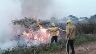 Fogo já atingiu mais de 20% do Pantanal - Os incêndios no Pantanal já atingiram quase três milhões de hectares, segundo dados do Ibama e da Universidade Federal do Rio de Janeiro, a UFRJ. Isso equivale a mais de 20% de todo o bioma.