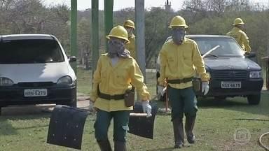 Em MS, homens do Exército e moradores locais recebem treinamento para combater o fogo - Os voluntários que participam do curso em Mato Grosso do Sul recebem roupas especiais e equipamentos. O material foi doado por ONGs que atuam na preservação do Pantanal.
