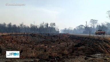 Queimadas aliadas à baixa umidade do ar causam dificuldade para respirar - Bombeiros já registraram mais de 5 mil focos de queimadas em julho, em Goiás.