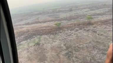 Chuva não cai em uma das áreas mais afetadas pelas queimadas em MT - Agentes da Força Nacional vão para o estado ajudar no combate às chamas.