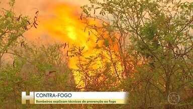 Mês de setembro de 2020 é o de maior número de focos de incêndio da história, no Pantanal - Desde 1998, o Instituto Nacional de Pesquisas Espaciais divulga dados referentes às queimadas no Brasil. Desde então, nunca o Inpe identificou tantos focos de incêndio no Pantanal como em 2020. Faltam três meses para o ano acabar, mas o Inpe já contabilizou 16.119 focos de queimadas no bioma. Isso é mais de 50% acima do recorde anterior, de 2005, 10.856 focos de incêndio.