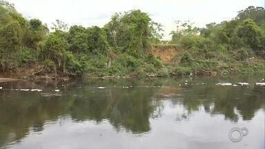 Dia do Rio Tietê é festejado junto com a chegada da primavera - Neste dia 22 de setembro, data em que começa a primavera no hemisfério sul, é também o Dia do Rio Tietê, um dos rios mais importantes do estado de São Paulo.