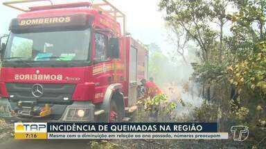 Números de queimadas na região preocupam autoridades - Confira.