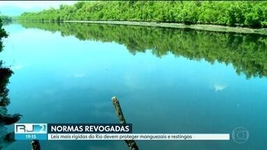 Leis mais rígidas do Rio devem proteger manguezais e restingas - O Conselho Nacional do Ambiente anulou normas ambientais que protegiam manguezais e restingas. No Rio de Janeiro, leis estaduais mais rígidas devem continuar a resguardar a natureza, mas não livram o estado de possíveis impactos.