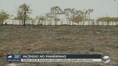 Queimada consome área verde de Matão e incêndio atinge o Parque Pinheirinho em Araraquara - Altas temperaturas deixam umidade baixa, o que favorece o surgimento do fogo.