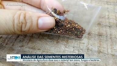Ministério da Agricultura faz análise de sementes misteriosas da Ásia - Segundo eles, as sementes possuem ácaro, fungos e bactérias.