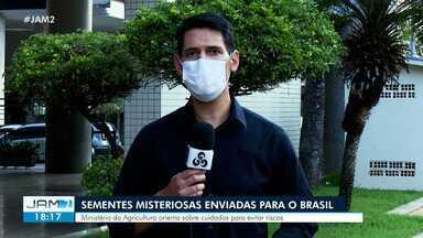 Sementes misteriosas são enviadas para o Brasil - Ministério da Agricultura orienta sobre cuidados para evitar riscos