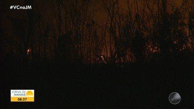 Bombeiros e brigadistas lutam para conter queimadas na região da Chapada Diamantina - O fogo já causou destruição em uma área de 500 hectares de vegetação.