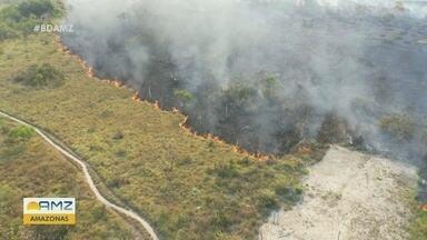 Região Sul do Amazonas é uma das mais afetadas por queimadas no país - Equipe de reportagem percorreu por lugares onde a floresta foi derrubada pelo fogo.