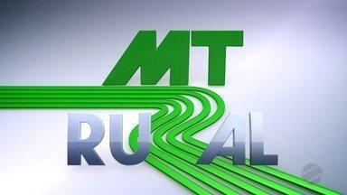 Assista o 2º bloco do MT Rural deste domingo - 18/10/20 - Assista o 2º bloco do MT Rural deste domingo - 18/10/20