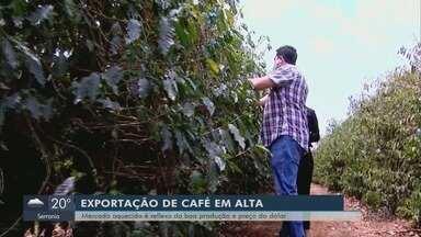 Alta na exportação de café é reflexo de boa produção e preço do dólar - Alta na exportação de café é reflexo de boa produção e preço do dólar
