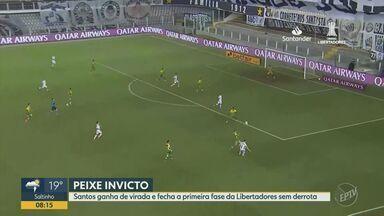 Santos termina primeira fase da Libertadores sem derrota após vitória contra o Defensa - Virada do time por 2 a 0 garantiu boa colocação ao time na Libertadores.