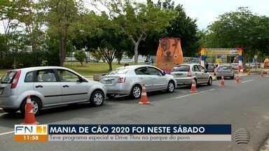 Mania de Cão tem programação no Parque do Povo, em Presidente Prudente - Atividades foram realizadas no último sábado (24).