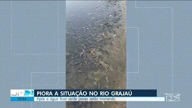 Após a água do rio Grajaú ficar verde, peixes estão morrendo - Moradores e autoridades de alguns municípios próximos ao Grajaú tentam entender o que está acontecendo com o rio.