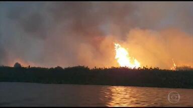 Fogo volta a atingir a Serra do Amolar, no Pantanal de MS, neste domingo (1º) - A chuva apagou os focos semana passada, mas um raio deu início a um incêndio no Parque Nacional do Pantanal e atingiu a vegetação que ainda não tinha sido destruída.