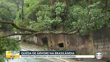 Capital de São Paulo registra relâmpagos durante chuva - Zona Norte da cidade foi atingida por chuva durante a madrugada desta terça (16)