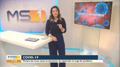 Aumenta casos de Covid-19 - Número de novos casos se aproximou do registrado no auge da pandemia