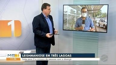 Sobe para 3 o número de pessoas com leishmaniose em Três Lagoas - MS1