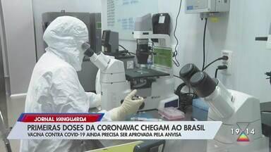 Primeiras doses da Coronavac chegam ao Brasil - Vacina contra Covid-19 ainda precisa ser aprovada pela Anvisa.