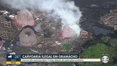 Globocop flagra crime ambiental em Caxias - Carvoaria ilegal funciona em Jardim Gramacho.