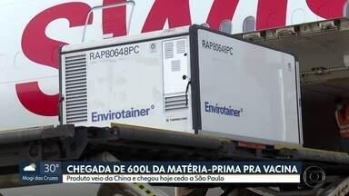 São Paulo recebe 600 litros da matéria-prima que vai ser usada para produzir vacina - Carregamento chegou na manhã desta quinta-feira à São Paulo.