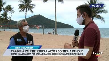 Caraguatatuba vai intensificar ações contra a dengue - Cidade está em alerta por causa do alto índice de infestação do mosquito.