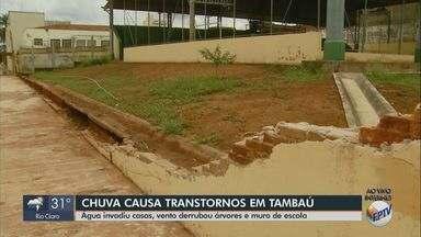 Chuva causa transtornos em Tambaú - Água invadiu casas, vento derrubou árvores e muro de escola.