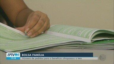 Número de pedidos para o benefício do Bolsa Família ultrapassou o teto em Pouso Alegre - Número de pedidos para o benefício do Bolsa Família ultrapassou o teto em Pouso Alegre
