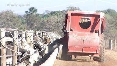 Federação que representa produtores rurais do estado faz balanço do ano de 2020 - Federação que representa produtores rurais do estado faz balanço do ano de 2020